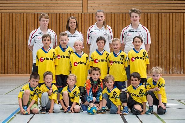 Gemischte E-Jugend Mannschaftsbild 2015